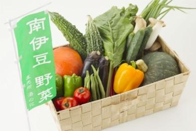 (Ga-01)湯の花 季節の野菜セット1年分