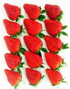 (Aa-06)Baby Berry Farmの厳選完熟いちご贈答用1パック入1箱