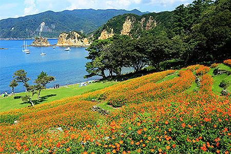 西伊豆町ふるさと納税感謝券(高齢者・障がい者の旅行もサポート)