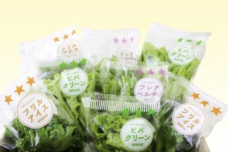 柿田川野菜