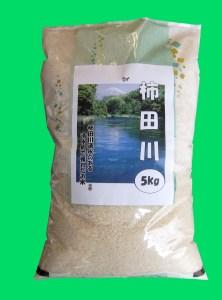 お米「あいちの香」5キロ