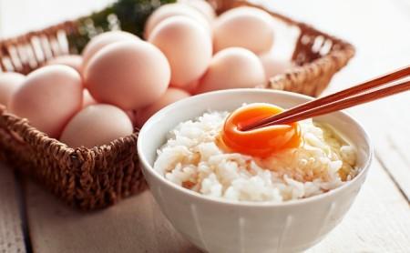 遠州森町 生で食べて欲しい烏骨鶏の卵30個