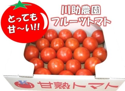 【2021年以降発送】とっても甘~い!川助農園のフルーツトマト1.5kg以上(最大糖度15.3度!!)