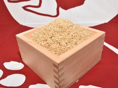 【ご当地のお米】 愛知県産あいちのかおり玄米10kg