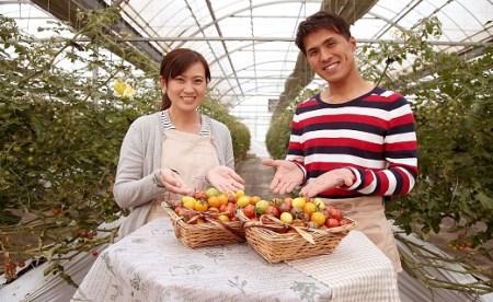 A.まるでトマトの宝石箱! ジュエリートマト