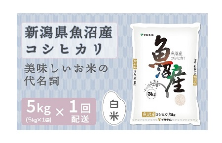 <安心安全なヤマトライス> 新潟県魚沼産コシヒカリ 5kg H074-057