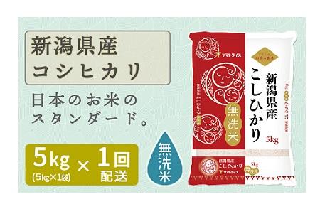 <安心安全なヤマトライス> 新潟県産コシヒカリ無洗米 5kg H074-059