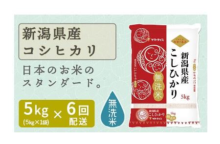 新潟県産コシヒカリ 無洗米 5kg ※定期便6回 下旬発送 安心安全なヤマトライス H074-170