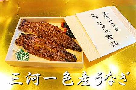 1-8.一色産うなぎ(蒲焼2尾冷凍)