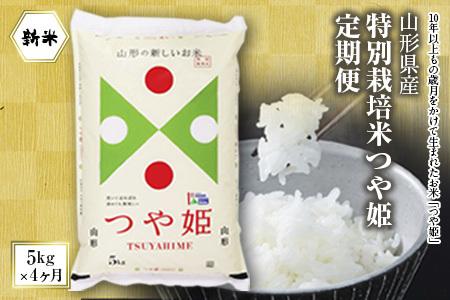 令和2年山形県産特別栽培米つや姫定期便4回(つや姫5㎏×4ヶ月) F2Y-1295