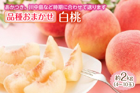 白桃 約2kg (4~10玉) 品種おまかせ F2Y-1344