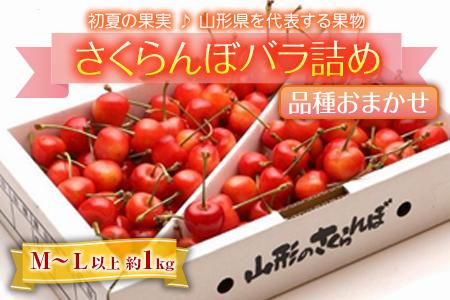 《先行予約!》初夏の果実♪ さくらんぼ 約1kg