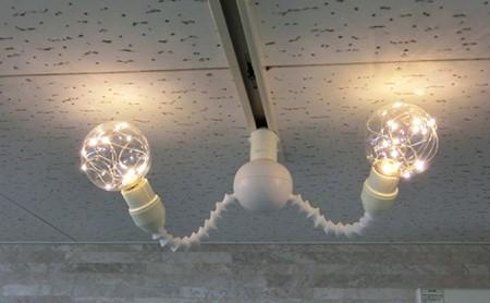 LEDチップス電球レオン&ジブロツインビー