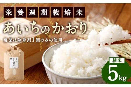 【ふるさと納税】幸田町産 あいちのかおり5kg 農薬散布なし「栄養週期栽培米」