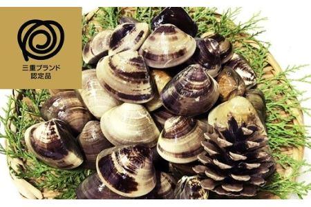 c_67 マルヨシ水産 桑名産中粒天然蛤 2.8kg