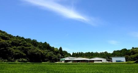 SS-18 松阪牛のタワラブロック