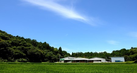 SS-46 松阪牛しゃぶしゃぶ贅沢食べ比べセット