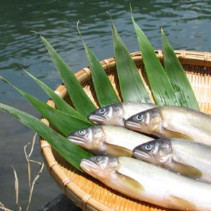 MN‐02 料亭の鮎の甘露煮三色セット