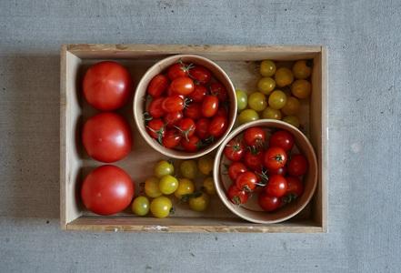 PF-01 新規就農者応援!自園で育てたトマトのドレッシングとケチャップセット