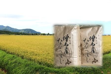[C31-004]【玄米】増毛町産米ななつぼし10kg(新米10月~発送)