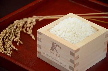 【令和2年7月中旬発送分】D16令和元年三重県産コシヒカリ 20kg(10kg×2袋)