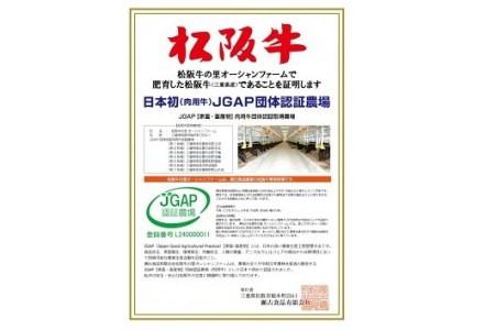 G11 12月限定!特産松阪牛ロース・肩ロースしゃぶしゃぶ