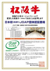 SS01 松阪牛サーロインステーキ 300g(2枚入)/(冷凍)瀬古食品 JGAP認定 松阪肉 名産 お取り寄せグルメ 三重県 大台町