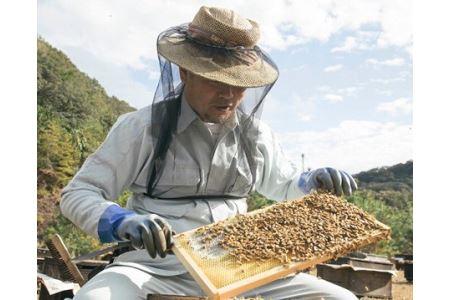 国産 はちみつ 百花蜜 420g /希少 ハチミツ 蜂蜜 ハニー 養蜂 純はちみつ 三重県 南伊勢町