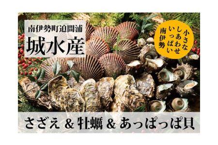 【冷蔵】BBQセット (アッパ貝6、サザエ約1kg、カキ7個)/貝類 牡蠣 バーベキュー 伊勢志摩産