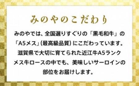 近江牛A5と国産豚肉の手ごねハンバーグ12個入