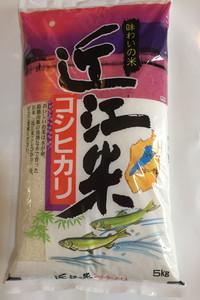 【特A受賞米】新米【3年産】近江米こしひかり【5kg×1袋】【T019SM】