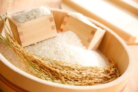 【2年産】中粒でふっくらツヤツヤの美白米「きぬむすめ」白米【30㎏×1袋】【C021SM1】
