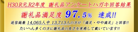 【ふとんの西川】AiR SI [エアーエスアイ] マットレス(BK色)(シングルサイズ)