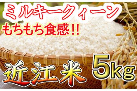 【平成30年度産】近江米 ミルキークィーン 白米5kg
