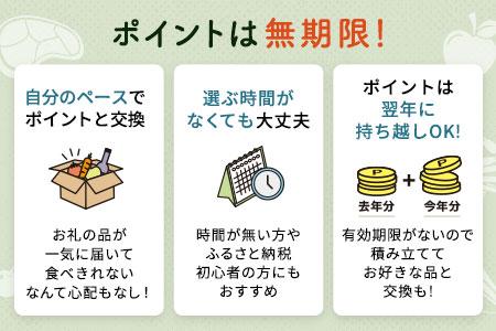 【有効期限なし!後からゆっくり特産品を選べる】滋賀県草津市カタログポイント