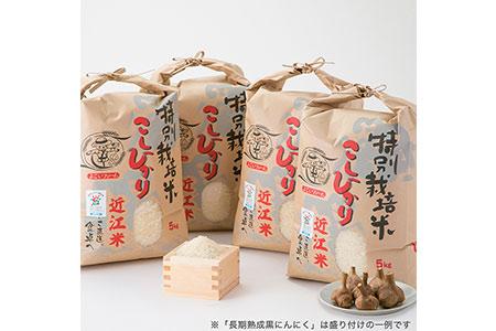 【T-533】よこいファーム 特別栽培米コシヒカリB【頒布会12カ月】