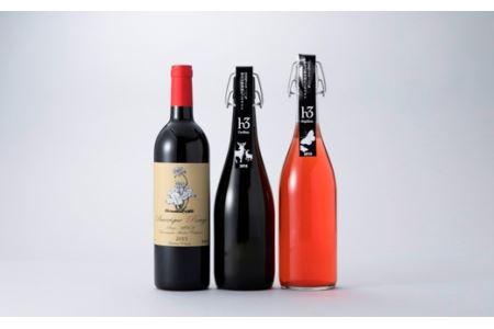 022H04 微発泡と芳醇を味わうワイン3本セット[高島屋選定品]