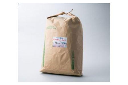 030h16 ハニーライス白米  キヌヒカリ(30kg)