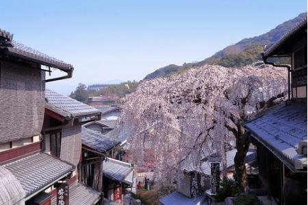 【京都市】JTBふるさと納税旅行クーポン(150,000円分)