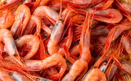 [051]超速リキッド凍結でドリップゼロ!北海道羽幌産生鮮甘えび1kg