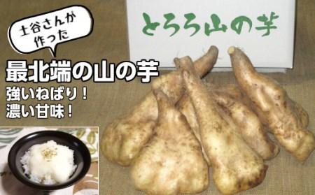 [153]北海道羽幌産山の芋げんこつ次郎