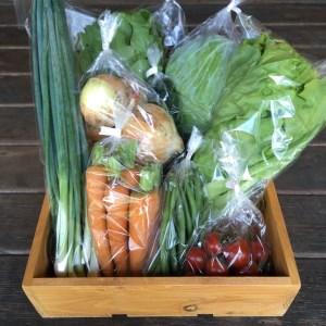 【定期便】京都長尾ファームの旬の野菜セット/隔月3回・半年コース 《季節 京野菜 新鮮 産地直送》