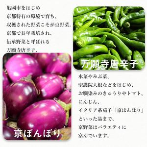 旬の京野菜 毎月お届けBコース(全6回)※沖縄・離島・諸島へのお届け不可