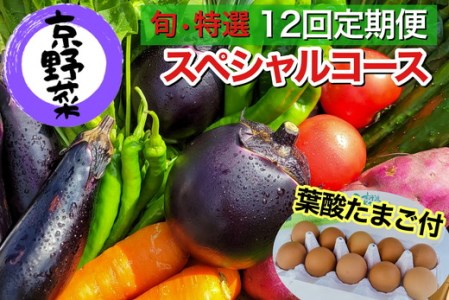 【定期便】旬の京野菜 特選 毎月お届けAコース(全12回)※沖縄・離島・諸島へのお届け不可