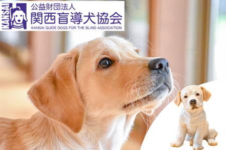 盲導犬訓練支援寄付~「行きたい場所に、安心していける社会に…」~(50.000円)