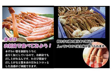 お刺身も出来る! 生本ずわい蟹むき身 500g × 2袋 【生食可】【オホーツクバザール株式会社】