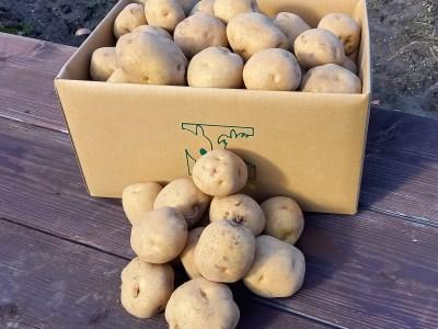 ◆網走産ジャガイモ(北あかり)【LM~2Lサイズ混玉】(10kg)