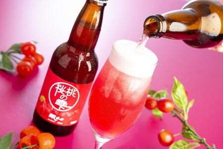 網走ビール24本セット
