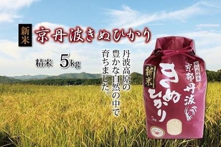 京丹波きぬひかり 令和2年度産の新米5kg [010MB002]