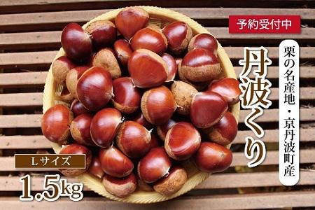 栗の名産地・京丹波町産 低温熟成 丹波くり(Lサイズ)1.5kg [012NA005L]